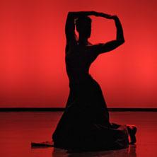 Junge Choreografen | 18. Jan. 20 | St. Pölten